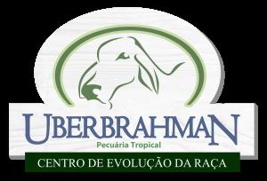 uberbrahman Logo